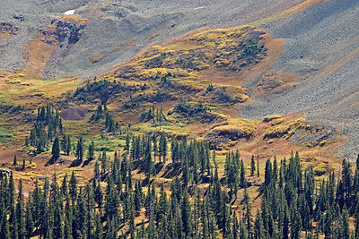 La Plata Mtns, Rock Glacier, tundra - Fall colors